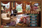 Cabin in Woods - Hidden Object