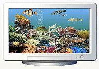 AquaScreen2 3D