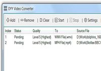 DYY Video Converter