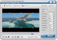 AVI to FLV/GIF Converter