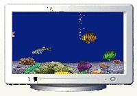 AquaAngel 3D