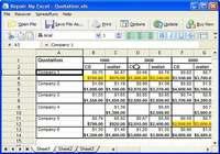 Repair My Excel