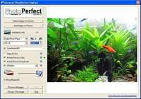 PhotoPerfect DigiCam