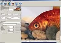 Shortcut PhotoZoom Professional