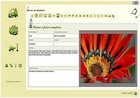 T l charger logiciel de jardin gratuit 3d for 3d jardin paysagisme