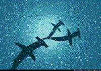 Océan Requins Marteau