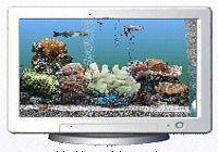Aquasea 3D