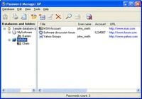 Password Manager Professional