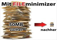 FILEminimizer Suite 8.0 Desktop