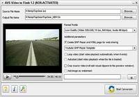 AVS Video to Flash