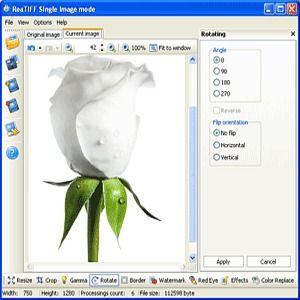 convert pdf to tiff windows