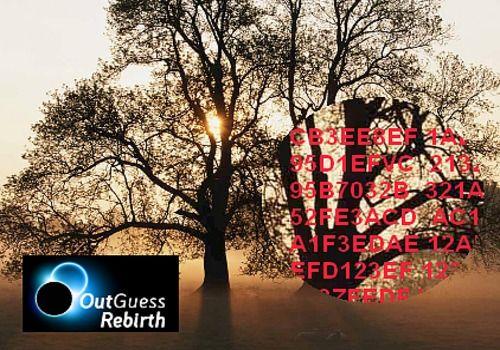 Outguess-rebirth