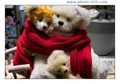 photo-555.com Album 12 Screensaver