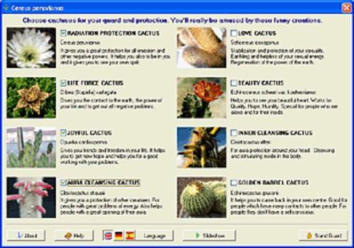 Cactus Emulator