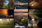 Visions de la nature