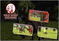 Wild Wolf tournage