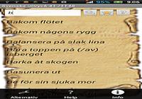 Svenska uttryck Full