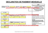 Easy Auto Entrepreneur