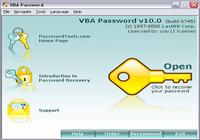 VBA Password