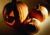 Free Halloween Night Screensaver