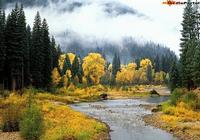 Yellow River Screensaver