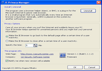 IE Privacy Manager