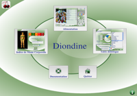 Diondine Mac Version 6
