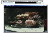 IPViewer for dlink camera