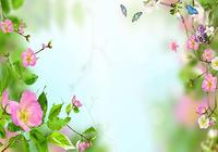 Fleurs Fond Animé