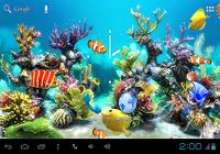 Aquarium Kitkat Live Wallpaper