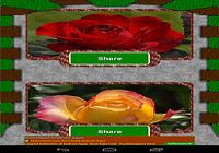 Flower Mania Photo Share free