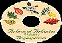 Arbres et arbustes angiospermes