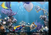 La véritable aquarium - HD