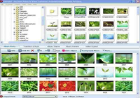 Photo to Video Converter Professional