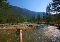 Fastest River Screensaver