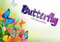 Papillon Fond Animé