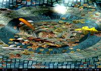 Fond d'écran animé Carpes