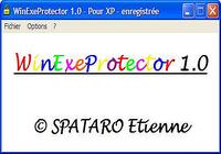 WinExeProtector