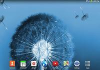 Galaxy S3/S5 fond d'écran