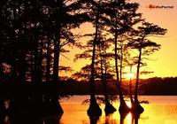 Lurid Sunset Screensaver