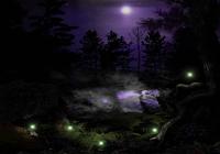 Dark Forest screensaver