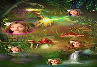 Bubble Photo Live Wallpaper