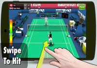 Badminton 3D