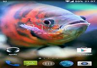 Aquarium 3D Fond d'écran vidéo