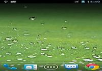 Galaxy S3 Pluie fond d'écran