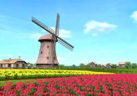 Windmill 3D Screensaver