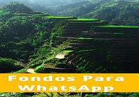 Fondos Para WhatsApp Gratis