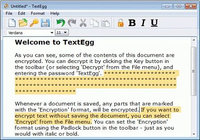 TextEgg Simple Encryption Software