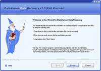 DataNumen Data Recovery