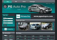 PG Auto Pro Software